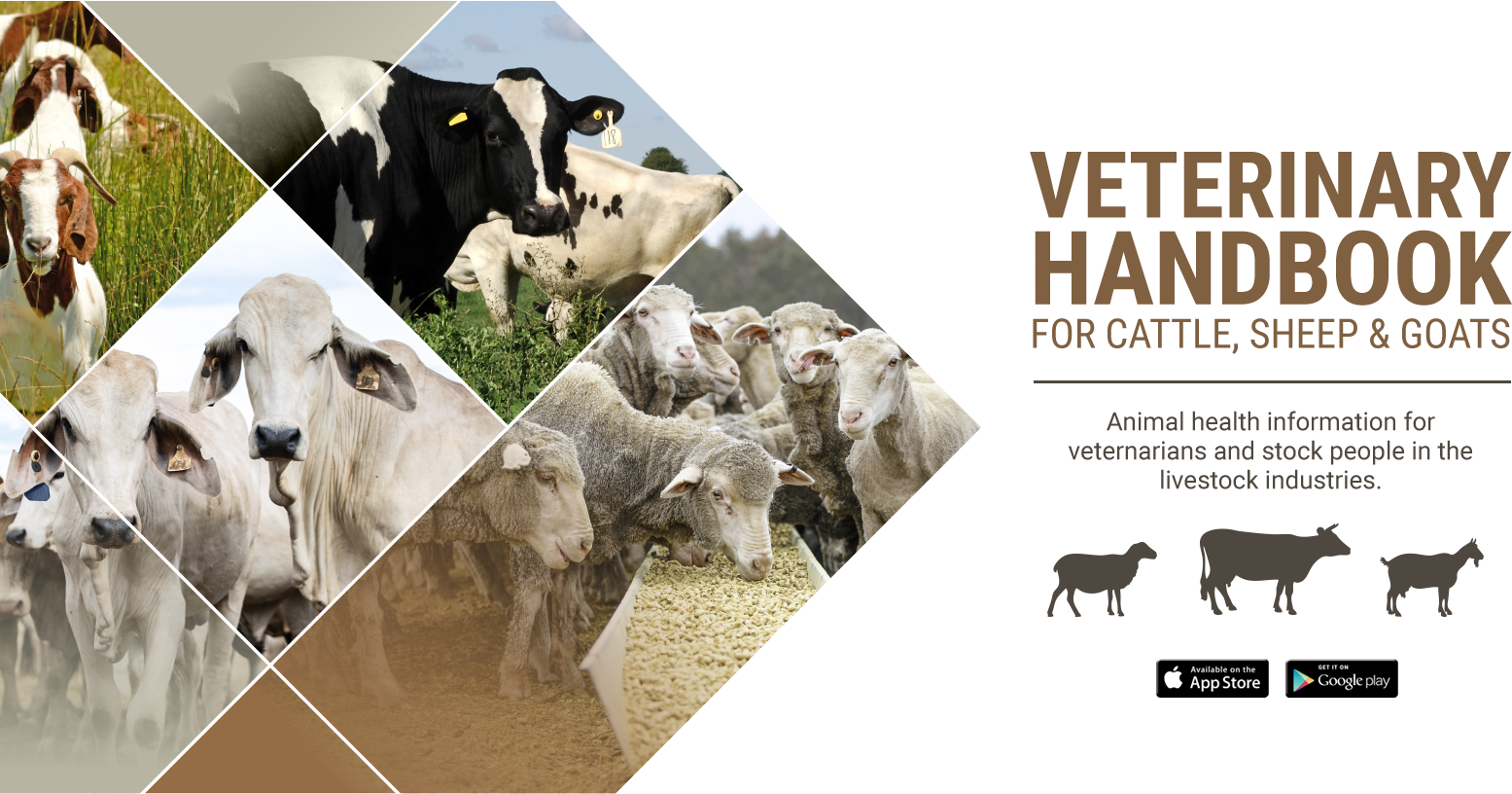 Veterinary handbook for cattle, sheep and goats > Home